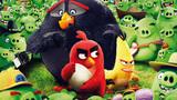 Angry Birds vo filme  (SD)