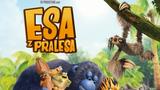 Esá z pralesa  (SD)